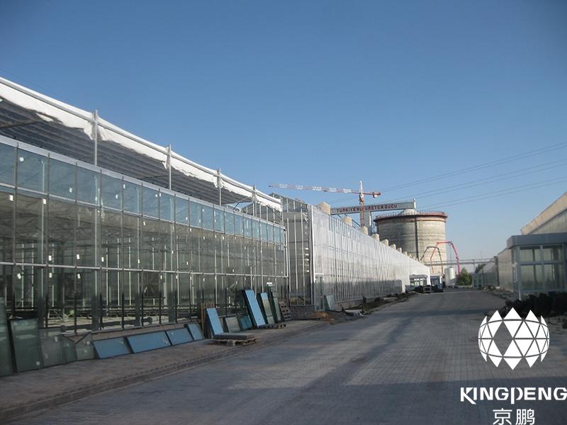 Nursery Greenhouse, Turkey