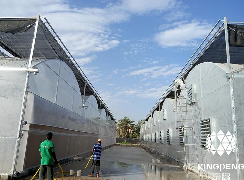 Hydroponic Greenhouse, Oman